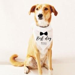 """""""Best Dog Bowtie"""" Φουλάρι..."""